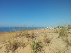 Dune e spiaggia fronte villa